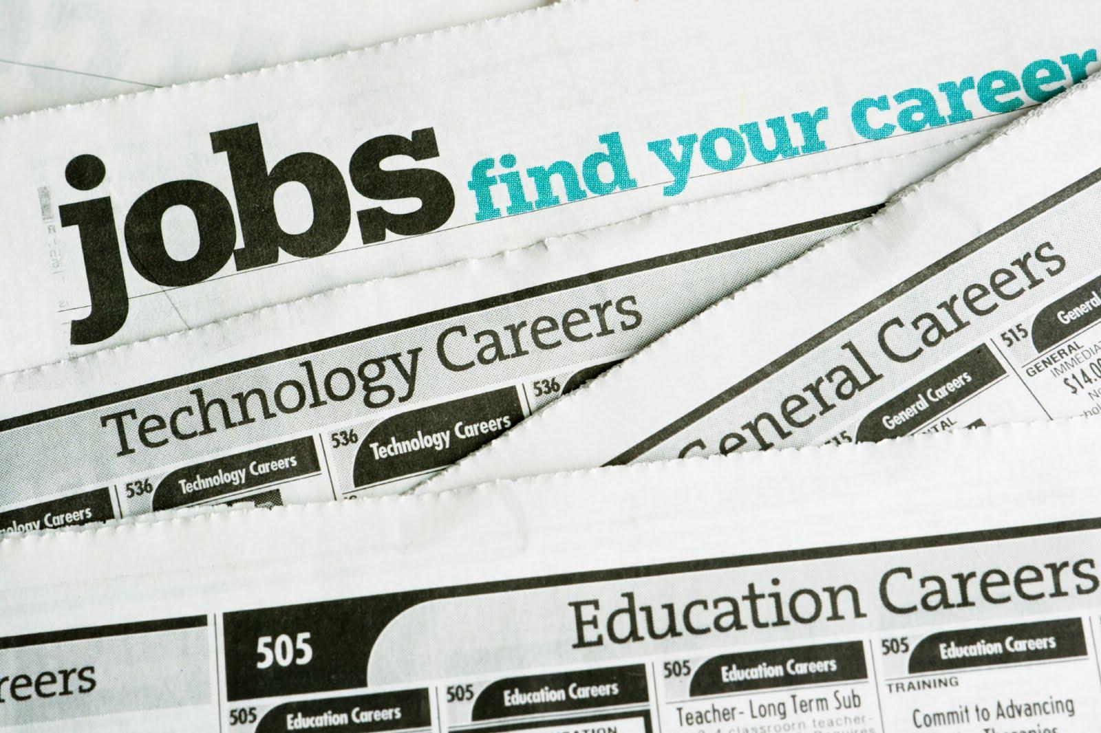 the career path towards becoming an economist